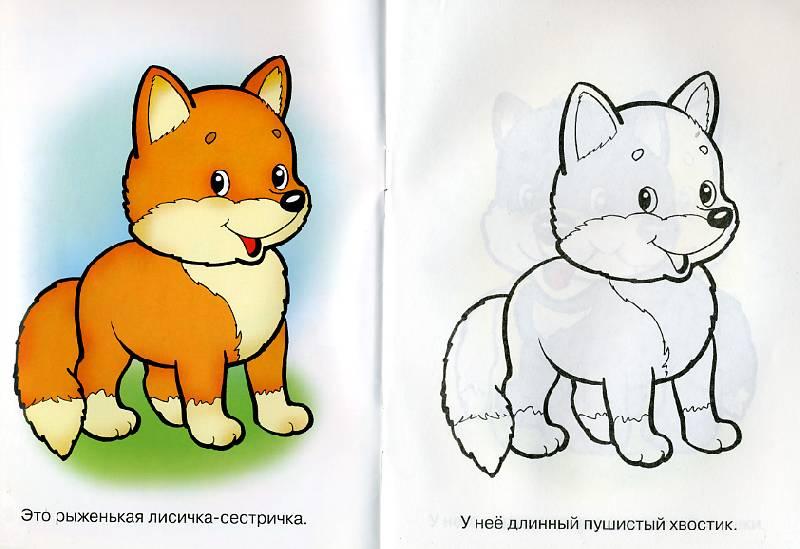 Рисунок фото лиса