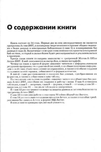 Иллюстрация 1 из 39 для Access 2007 - Вячеслав Кошелев | Лабиринт - книги. Источник: Nadezhda_S