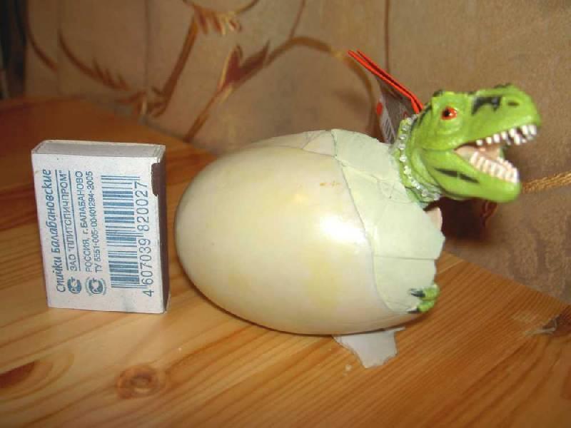 Иллюстрация 1 из 7 для Вылупляющийся из яйца тиранозавр (970409) | Лабиринт - игрушки. Источник: hellgirl
