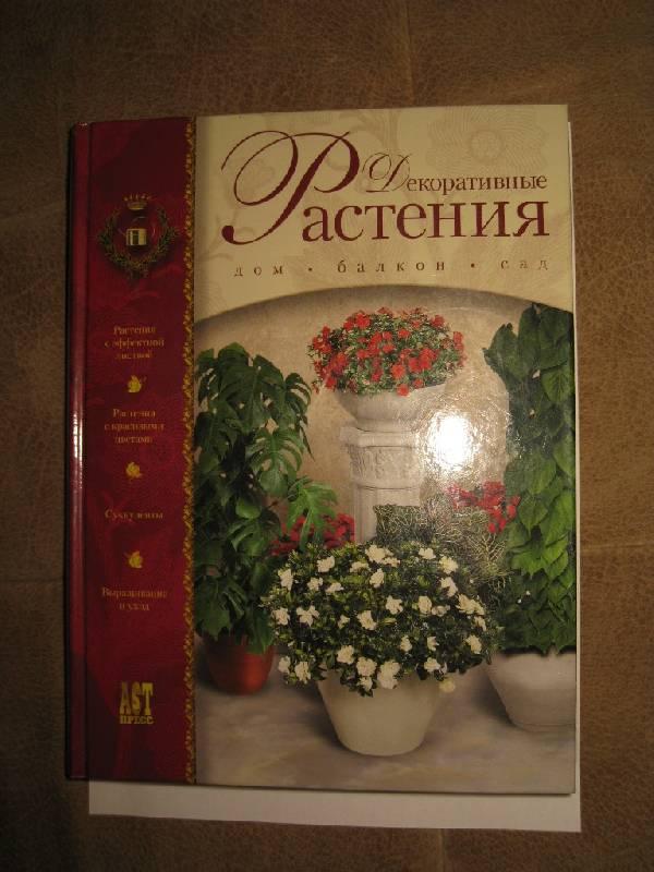 Иллюстрация 1 из 15 для Декоративные растения от А до Я: Дом, балкон, сад   Лабиринт - книги. Источник: Нателла