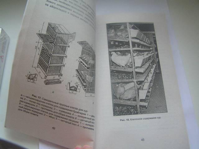 Иллюстрация 1 из 18 для Куры: разведение, содержание, уход - Егор Лебедько | Лабиринт - книги. Источник: ИринаИ