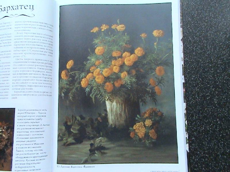 Иллюстрация 3 из 45 для самые красивые
