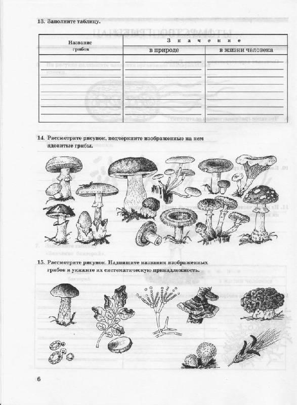 Многообразие живых организмов.  Рабочая тетрадь.  7 класс.