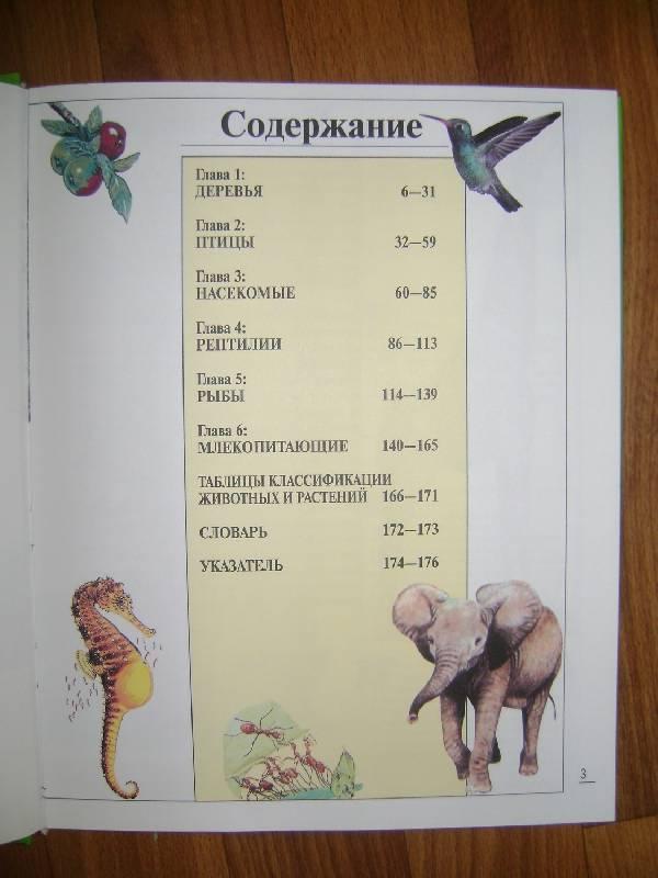 Иллюстрация 1 из 4 для Удивительный мир живой природы. Иллюстрированная энциклопедия | Лабиринт - книги. Источник: AnnS