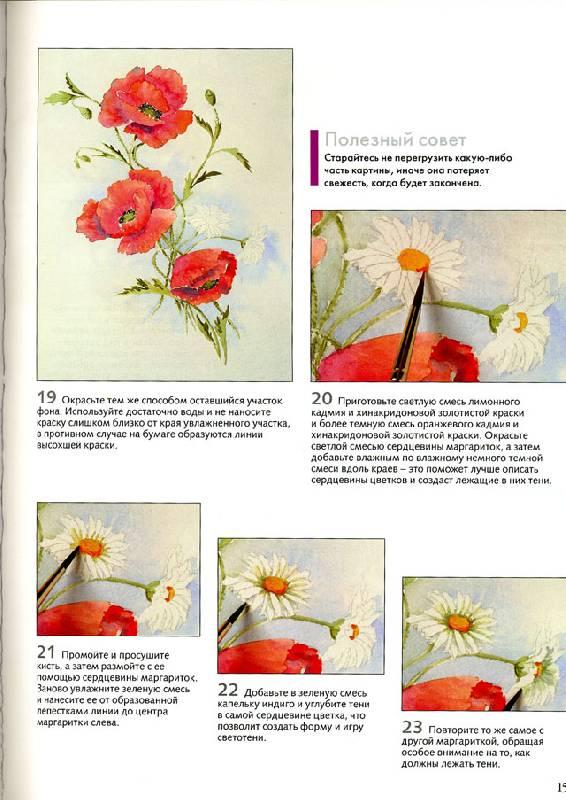 Иллюстрация 5 из 23 для рисуем по схемам