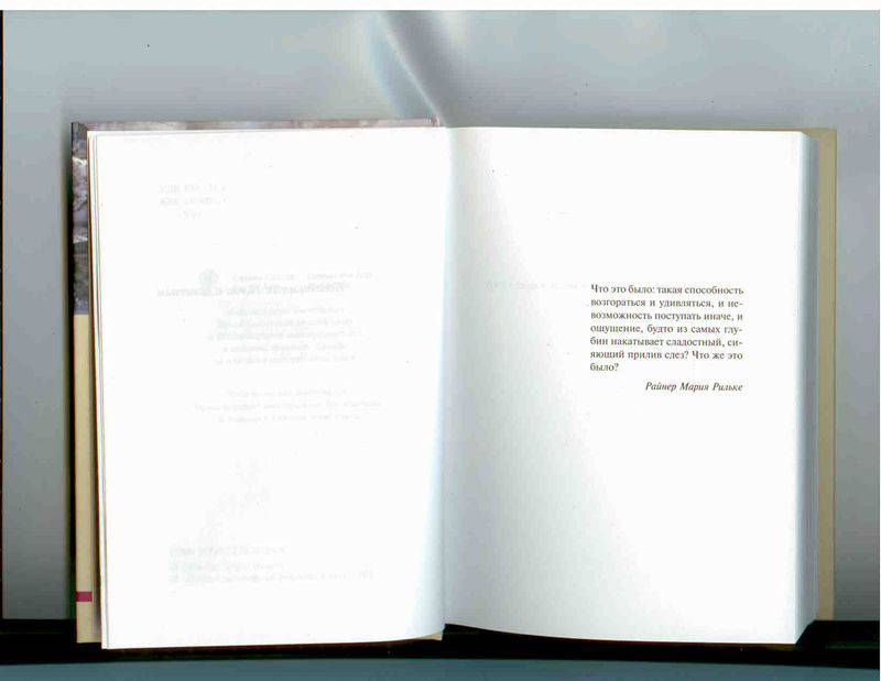 Иллюстрация 1 из 8 для Линии разлома - Нэнси Хьюстон | Лабиринт - книги. Источник: Рыкова  Алевтина Алексеевна