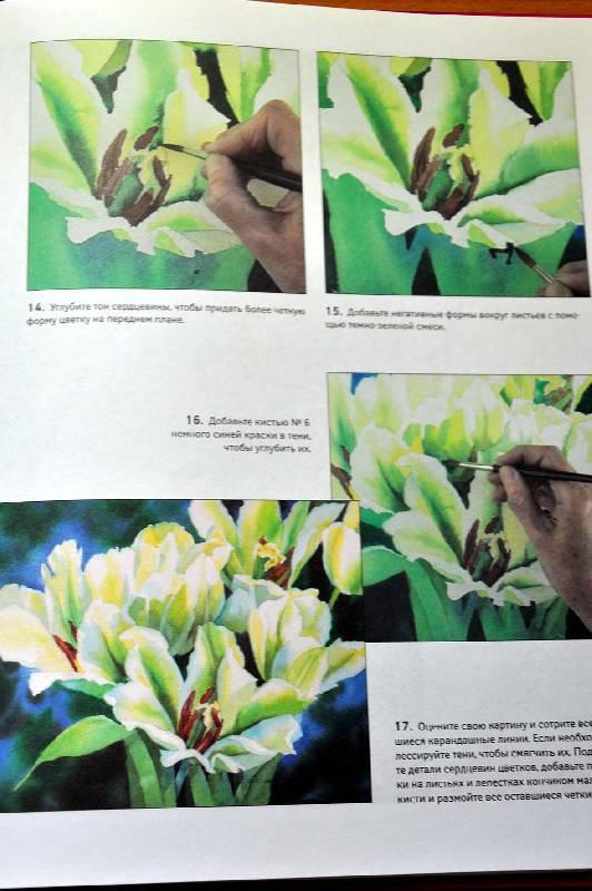 книги Рисуем цветы акварелью - Жанет Уиттл.  26. 10.  11. 12.