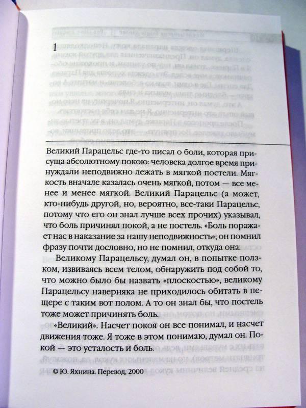 Иллюстрация 1 из 5 для Пятая зима магнетизера; Низверженный ангел - Пер Энквист   Лабиринт - книги. Источник: bukvoedka
