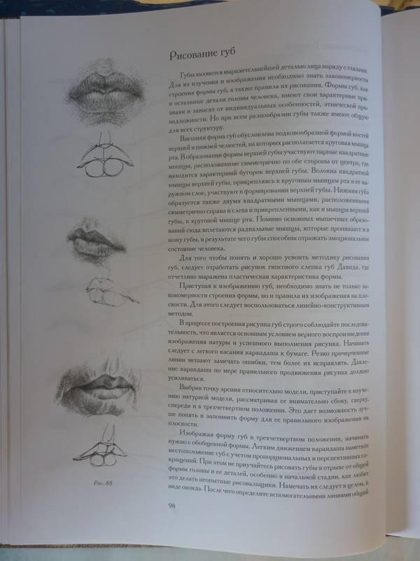 основы учебного академического рисунка: