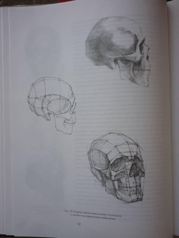 Книги Голова человека. Основы учебного академического рисунка - Нико…