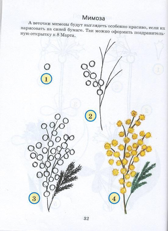 Рисуем 50 цветов деревьев и других