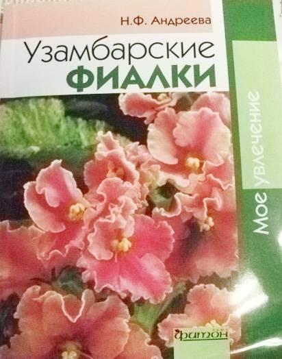 Цветы и комнатные зеленые растения