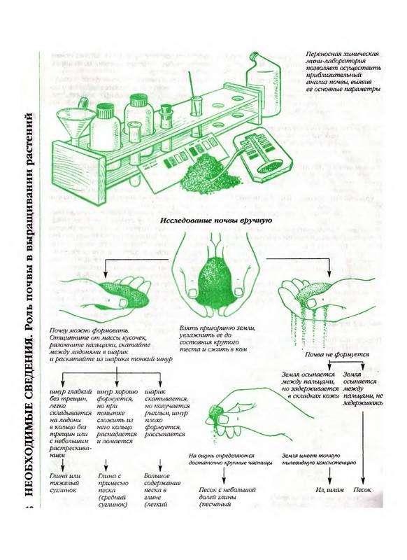 Иллюстрация 1 из 41 для Большая книга садовода и огородника - Октябрина Ганичкина | Лабиринт - книги. Источник: Ялина