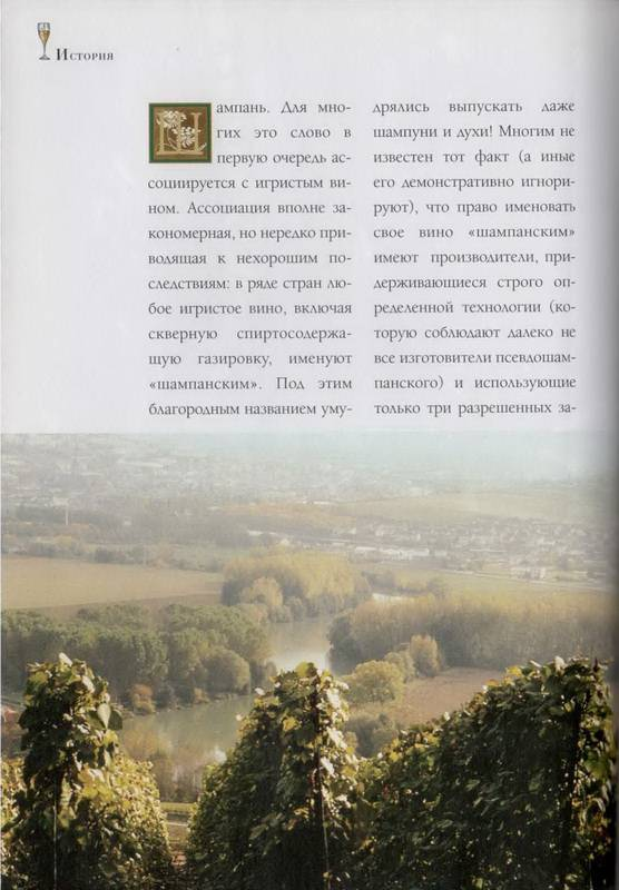 Иллюстрация 1 из 41 для Шампанское и другие игристые вина Франции - Юрий Зыбцев   Лабиринт - книги. Источник: Ялина
