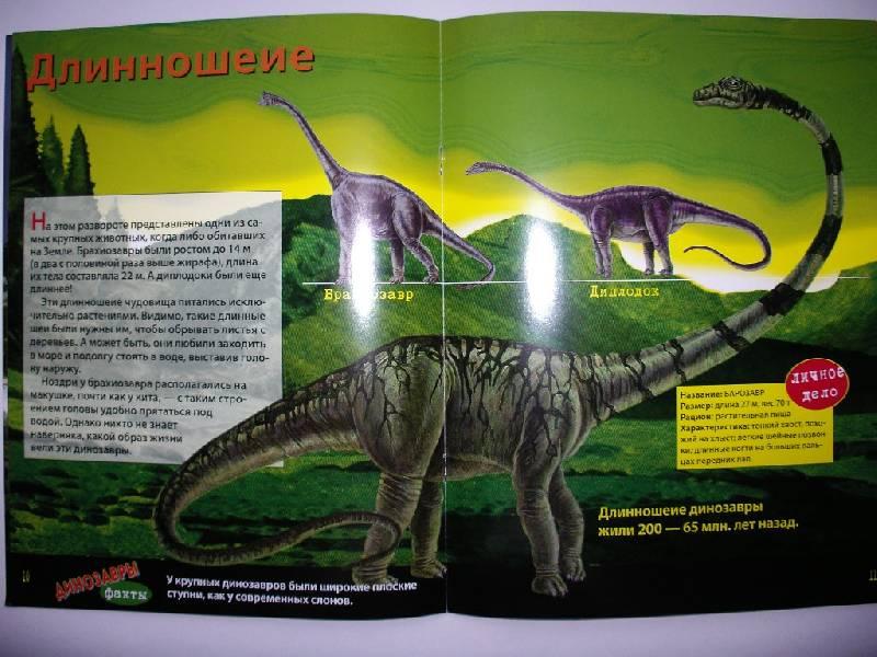 Иллюстрация 1 из 4 для Динозавры. Книжка со светящимися наклейками   Лабиринт - книги. Источник: Tiger.