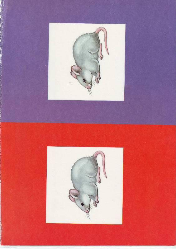 Иллюстрация 1 из 30 для Игры и упражнения по развитию сенсорных способностей детей 3-4 лет (комплект для индивид. занятий) - Л.Н. Павлова | Лабиринт - книги. Источник: -)  Олеся