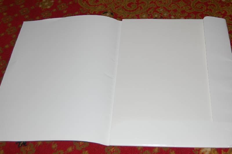 Иллюстрация 1 из 2 для Папка для графических работ 25 листов А3 (С67,...С113,30053) | Лабиринт - канцтовы. Источник: ИринаИ