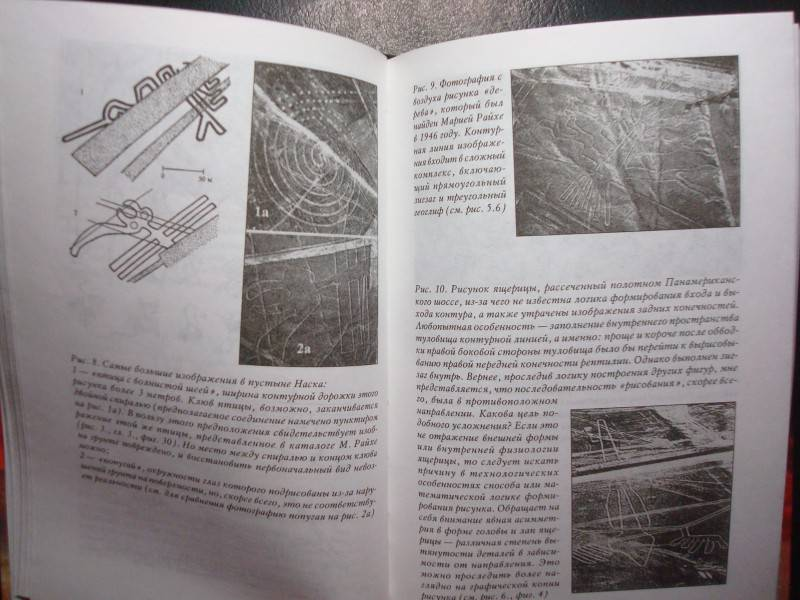Иллюстрация 1 из 8 для Пустыня Наска. Следы иного разума - Алла Белоконь | Лабиринт - книги. Источник: Salai