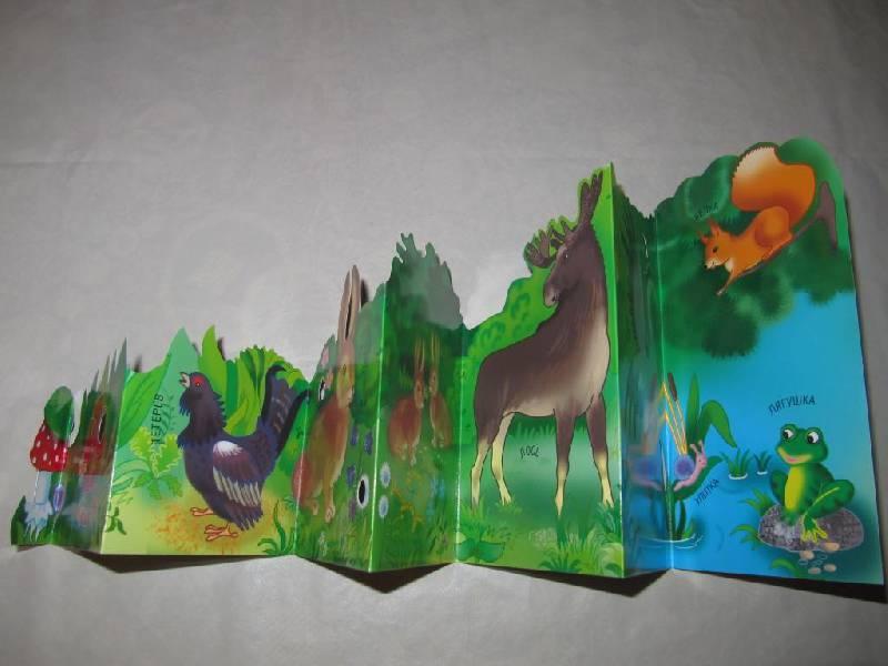 Кто там, в лесу.  Книжка-раскладушка.