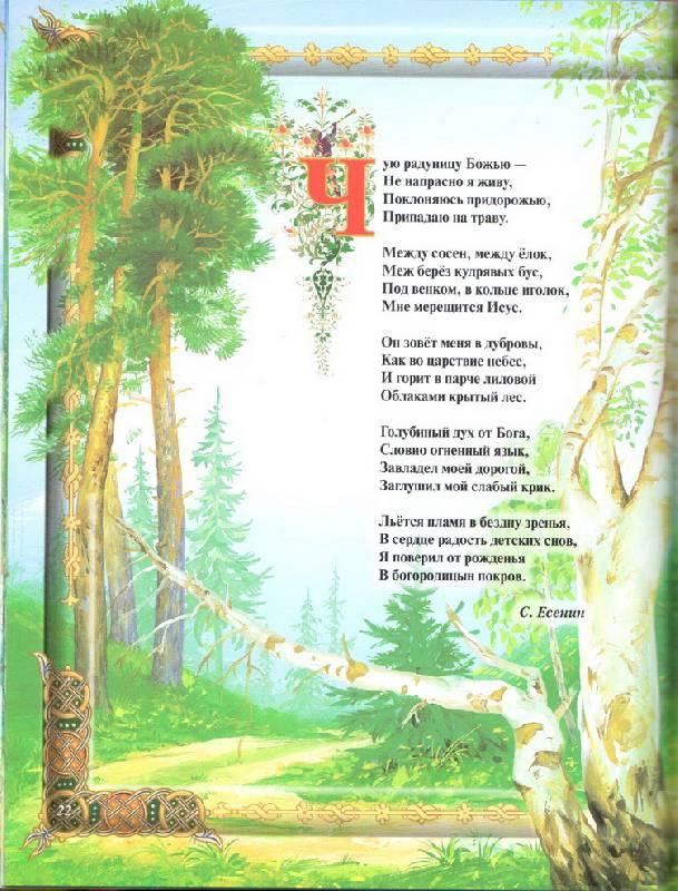 Стих трогательный про мужчин