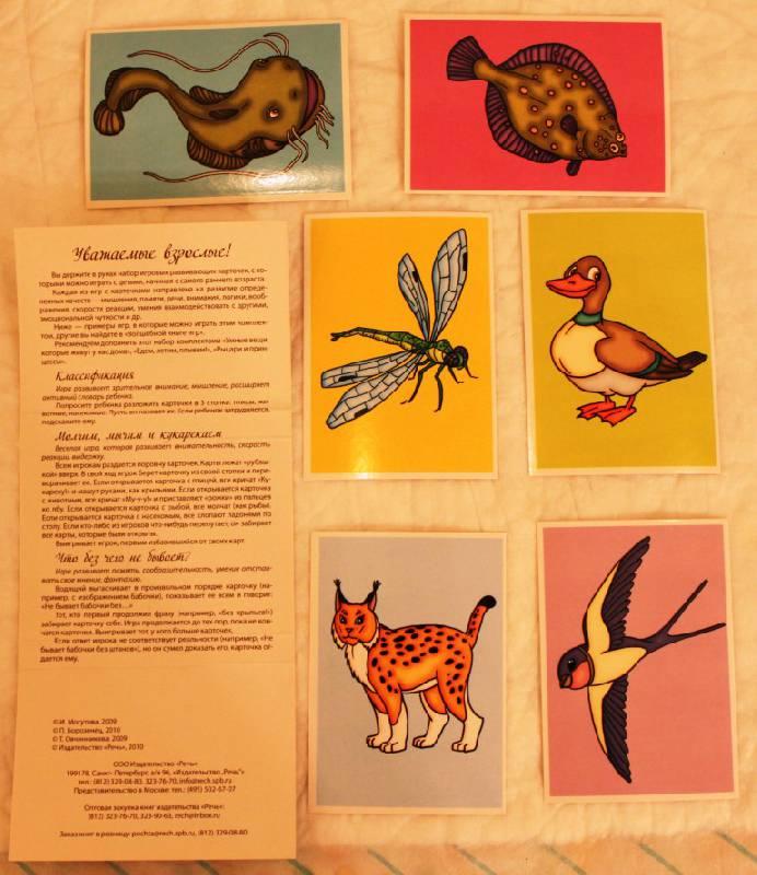 Иллюстрация 1 из 5 для Умный зоопарк. Набор игровых развивающих карточек | Лабиринт - книги. Источник: Ленча