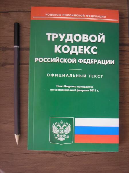 Иллюстрация 1 из 3 для Трудовой кодекс РФ по состоянию на 08.02.11 года   Лабиринт - книги. Источник: Поклонцева Юлия Сергеевна