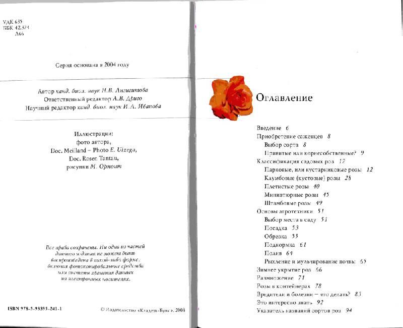 Иллюстрация 1 из 7 для Розы - Наталья Анзигитова | Лабиринт - книги. Источник: Lared