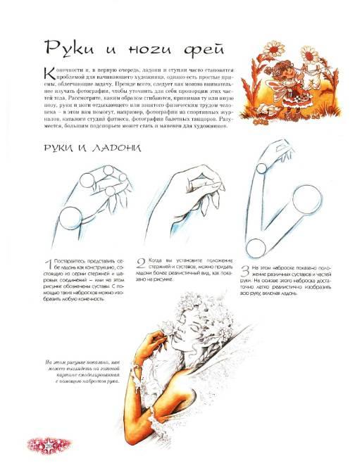 Вторая иллюстрация к книге феи рисуем