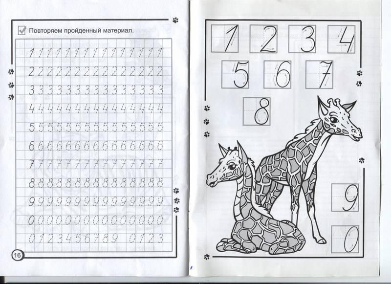 Пиши цифры правильно математические раскраски