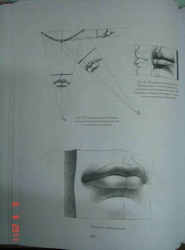 Основы рисунка николай ли, бесплатные ...: pictures11.ru/osnovy-risunka-nikolaj-li.html