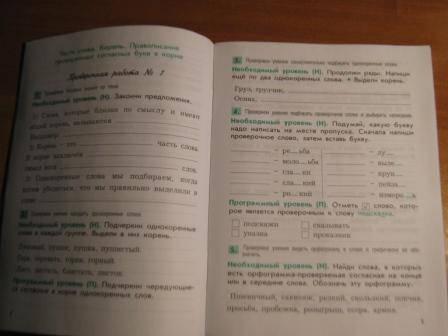 3 класс.  Вариант 1 Название: Проверочные и контрольные работы по русскому .