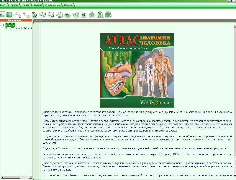 Иллюстрация 1 из 7 для Атлас анатомии человека (CD) | Лабиринт - софт. Источник: Рыженький