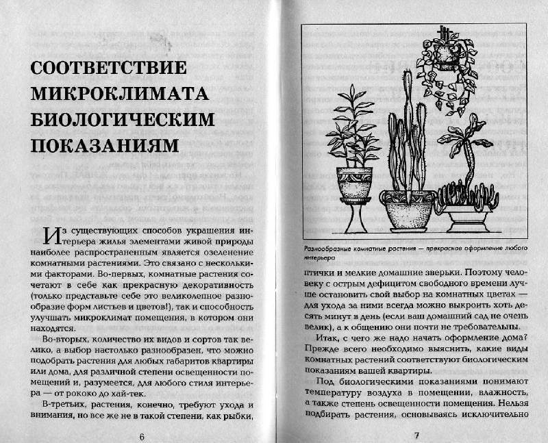 Иллюстрация 1 из 14 для Островок природы в вашем доме - Наталия Дмитриева   Лабиринт - книги. Источник: Росинка