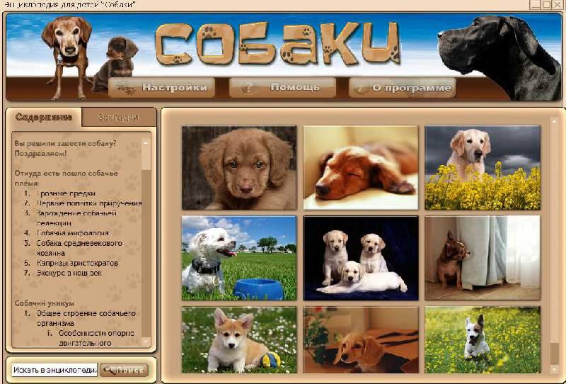 Иллюстрация 1 из 5 для Собаки (CDpc) | Лабиринт - софт. Источник: Рыженький