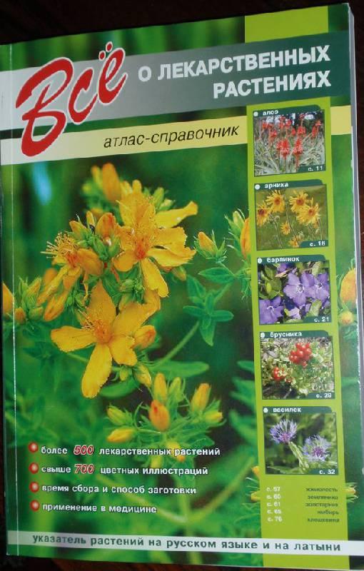 Иллюстрация 1 из 14 для Все о лекарственных растениях - С.Ю. Раделов   Лабиринт - книги. Источник: Волчонок