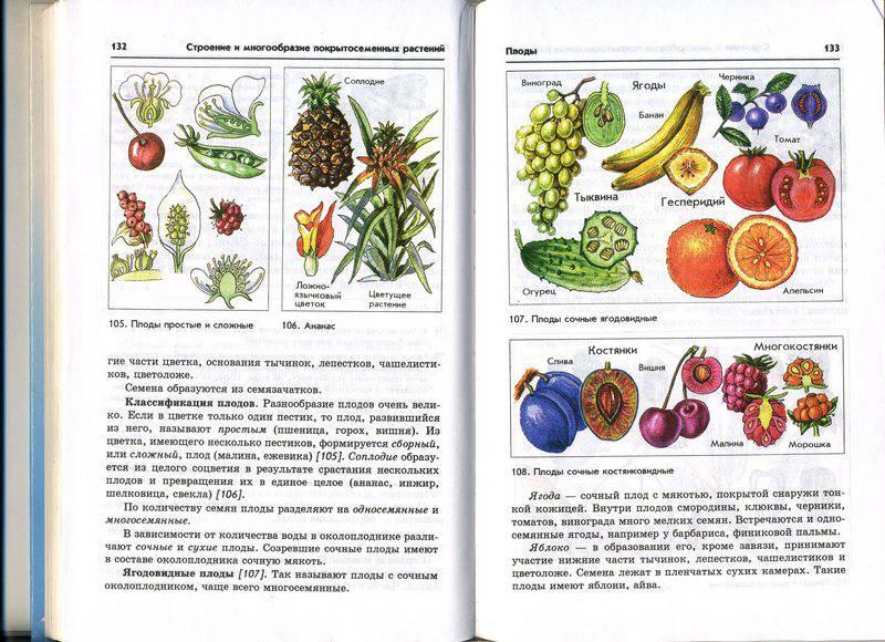 Иллюстрация 15 из 31 для книги биология