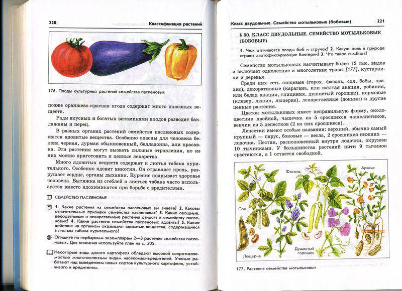 Иллюстрация 16 из 31 для книги биология