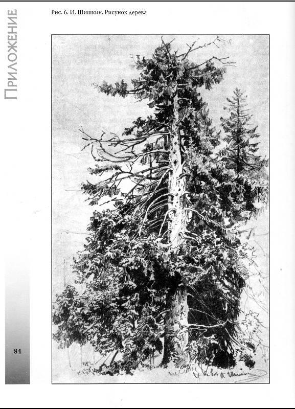 рисуем карандашом деревья цветы животные: