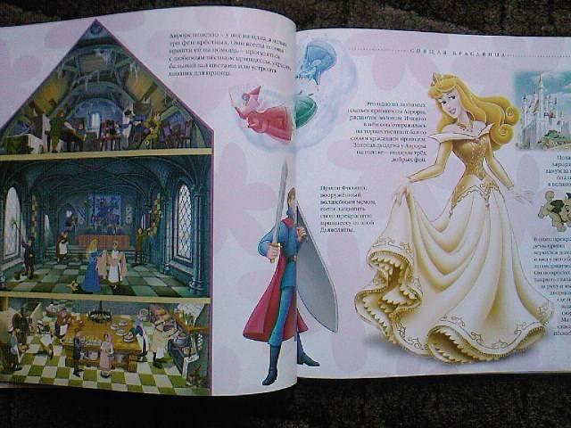 Иллюстрация 1 из 7 для Путеводитель по миру принцесс. Подарочная | Лабиринт - книги. Источник: Турист