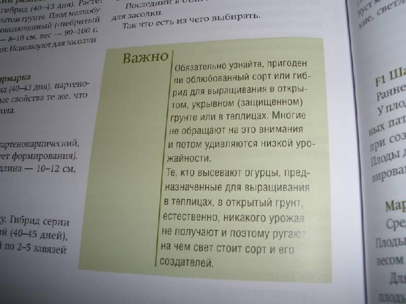 Двадцатая иллюстрация к книге шесть