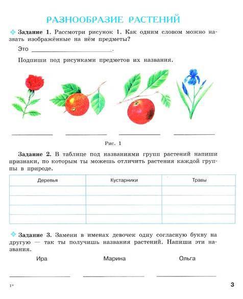 Иллюстрация 1 из 5 для книги биология