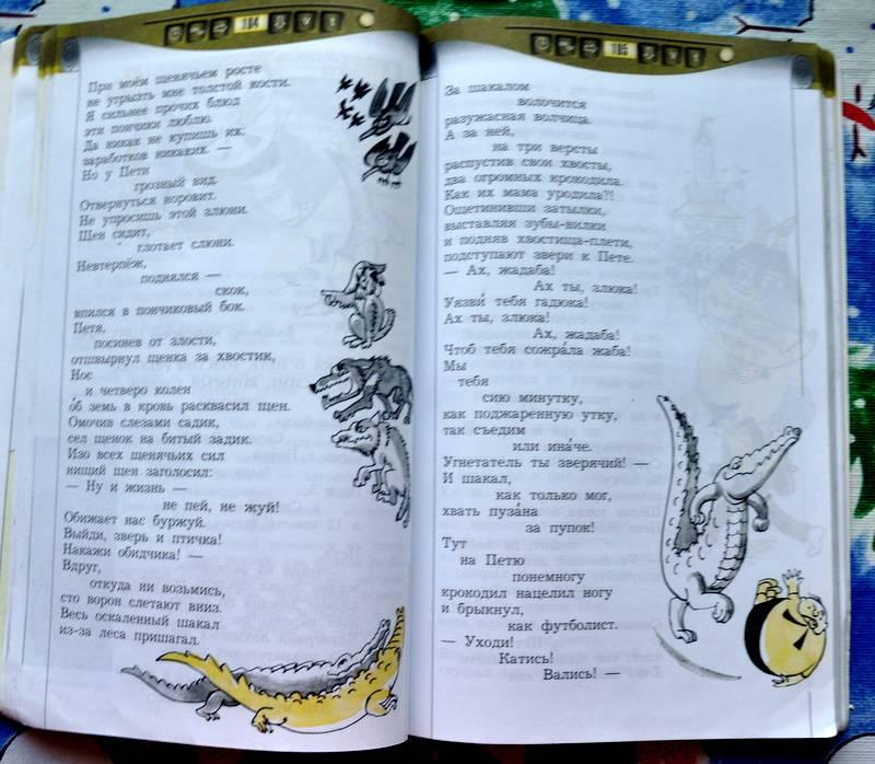 Двадцать девятая иллюстрация к книге