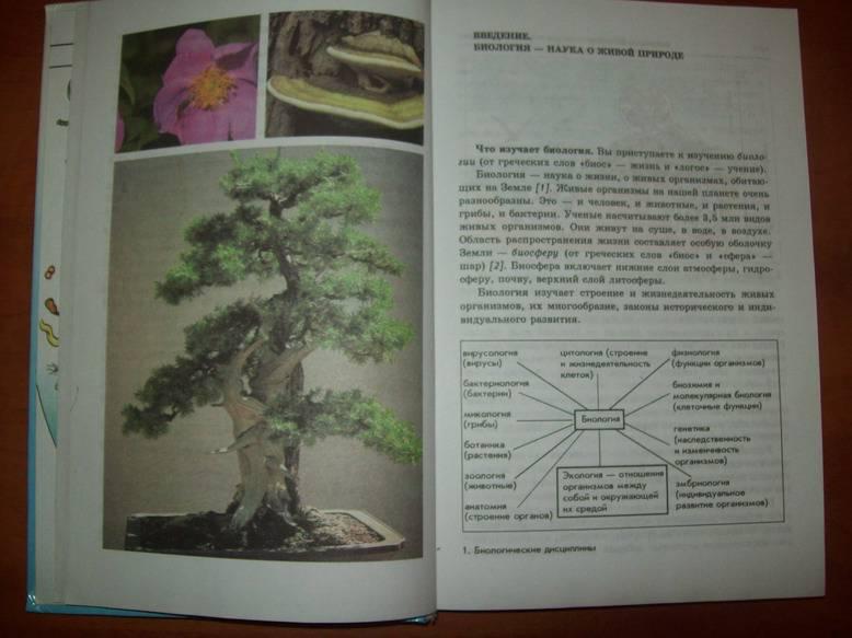 Класс учебник для