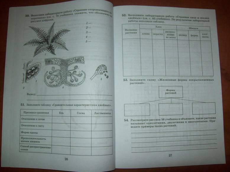 По биологии рабочая тетрадь 10 11 класс