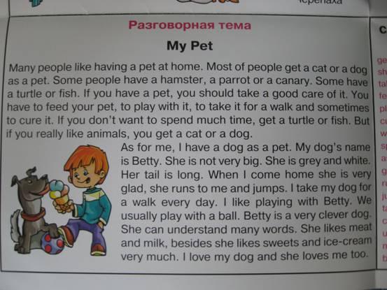 Я люблю собак перевести на английский язык