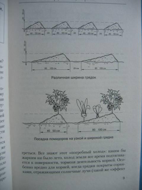 Иллюстрация 8 из 13 для треугольные