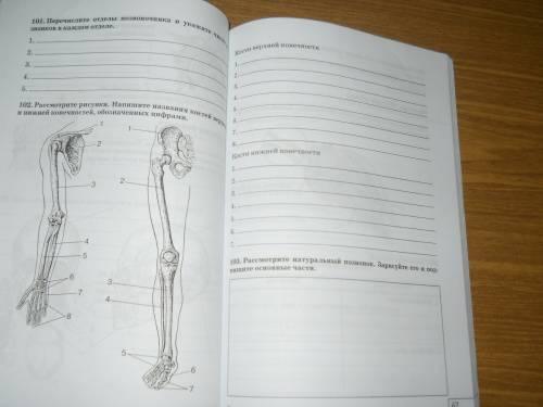 По биологии 6 класс сонин н и 2011 год