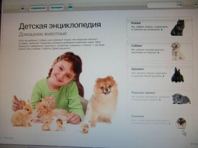 Иллюстрация 1 из 7 для Детская энциклопедия. Домашние животные (CD) | Лабиринт - софт. Источник: Лимпи