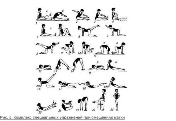 Физические упражнения в 50 лет в домашних условиях