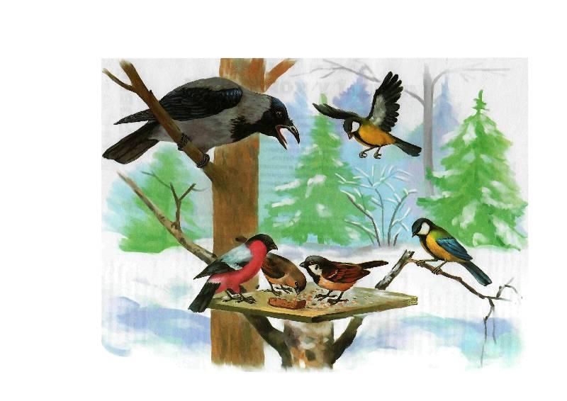 Рисунок диких птиц